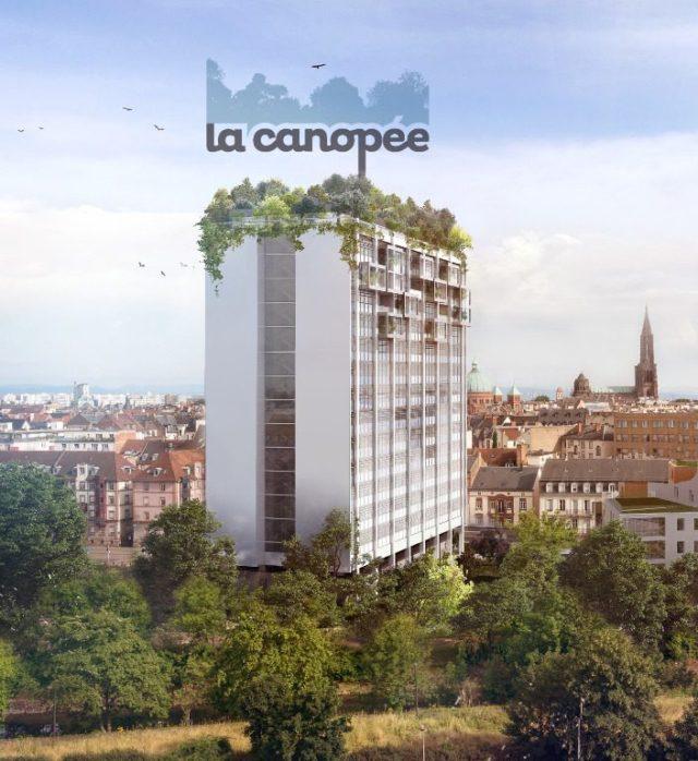 Centre Ville appartement 4 pièces 86m²