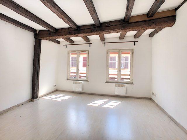 PETITE FRANCE 2 pièces 49 m²