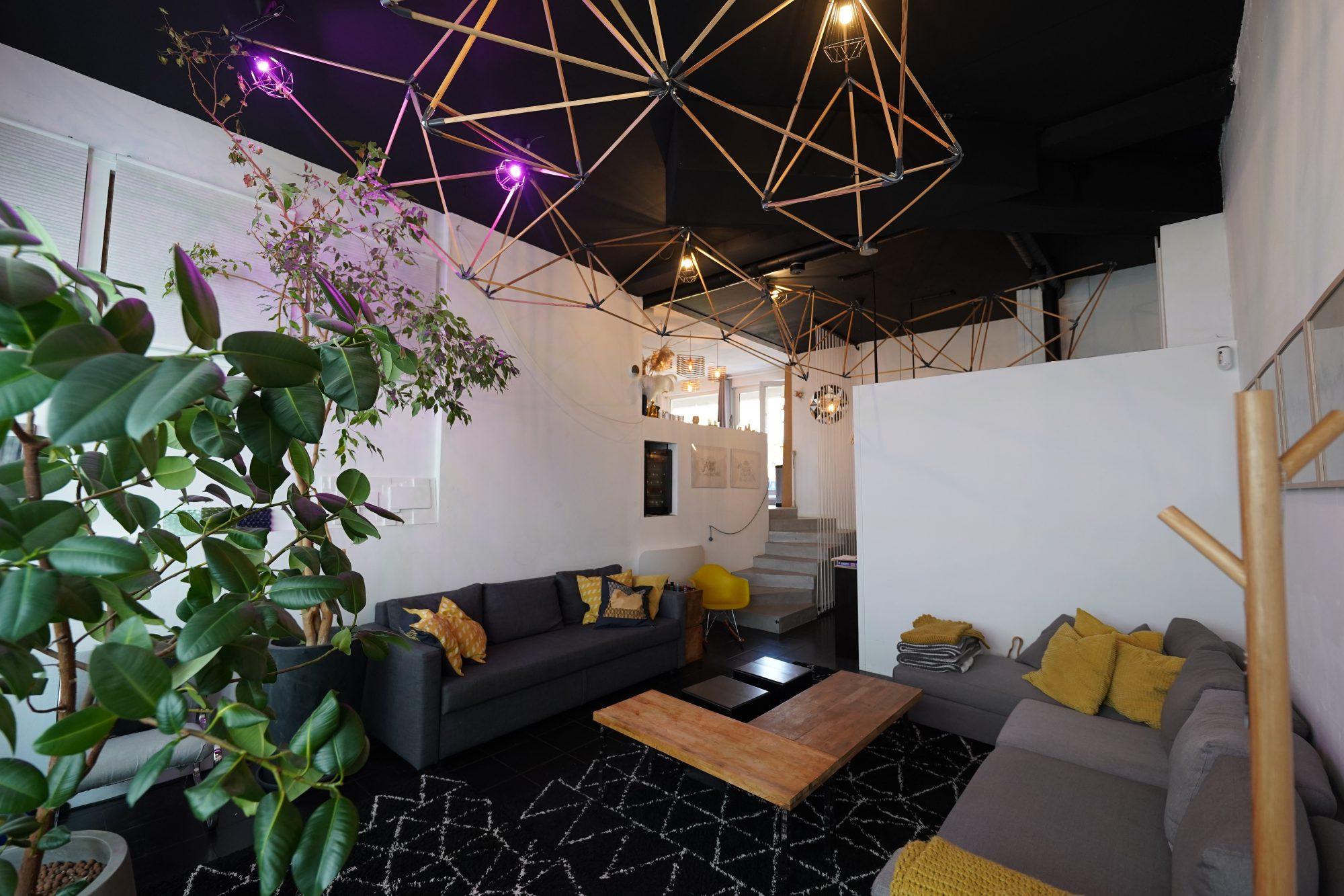 KRUTENAU, Superbe LOFT avec jardin privatif