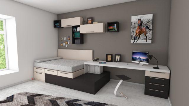 un studio d'étudiant bien agencé avec un bureau et un lit surélevé