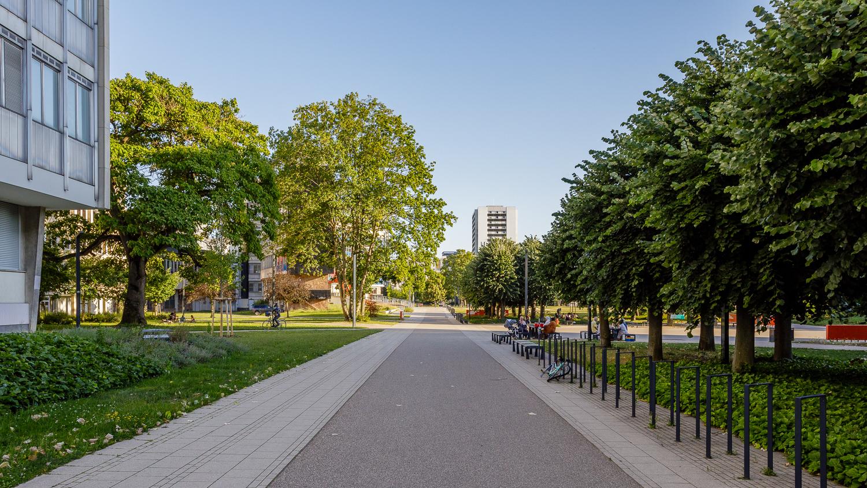 vue de strasbourg, quartier étudiant de l'Esplanade avec des studios